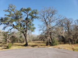 Photo of 0 E Brazos Bend Dr, Needville, TX 77461 (MLS # 85238770)