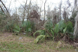 Photo of LOT 2 Highland Shores Road, Highlands, TX 77562 (MLS # 85608670)