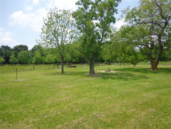 Photo of 0 County Road 43, Rosharon, TX 77583 (MLS # 87689509)