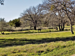 Photo of 7 La Serena Loop, Horseshoe Bay, TX 78657 (MLS # 90951833)