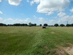 Photo of 0 Roesler Road, Needville, TX 77461 (MLS # 93541534)