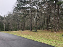 Photo of 81 N Forest Drive, Huntsville, TX 77340 (MLS # 93921853)