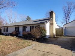 Photo of 1317 Bramblewood Court, Chesapeake, VA 23323 (MLS # 10177273)