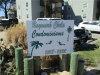 Photo of 1518 Chela Avenue, Unit D3, Norfolk, VA 23503 (MLS # 10251674)