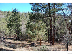 Photo of 1275 Fawnskin, Fawnskin, CA 92333 (MLS # 2140728)