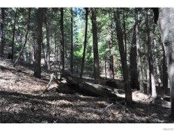 Photo of 0 Cedarpines Drive, Cedarpines Park, CA 92322 (MLS # 2152040)