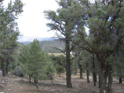 Photo of 0 Ponderosa Ranch Road, Big Bear City, CA 92314 (MLS # 2162159)