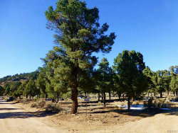 Photo of 0 Benito Wilson Road, Big Bear City, CA 92314 (MLS # 2162274)