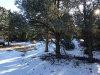 Photo of 0 Graphite, Big Bear City, CA 92314 (MLS # 2162342)