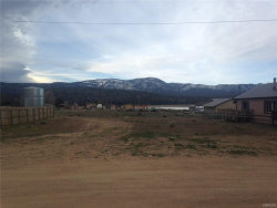 Photo of 0 South Drive, Big Bear City, CA 92314 (MLS # 3171529)