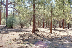 Photo of 1800 Shady Lane, Big Bear City, CA 92314 (MLS # 3171734)
