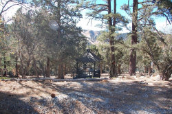 Photo of 43625 Wolf Road, Big Bear Lake, CA 92315 (MLS # 3171824)