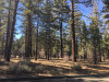 Photo of 1033 Wilderness Drive, Big Bear City, CA 92314 (MLS # 3173394)