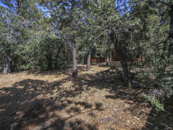 Photo of 693 Villa Grove Avenue, Big Bear City, CA 92314 (MLS # 3173507)