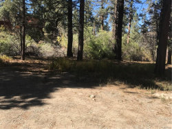 Photo of 613 Rose Hill Drive, Big Bear City, CA 92314 (MLS # 3173631)