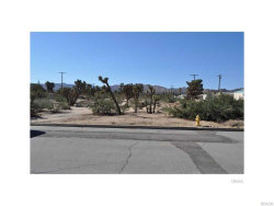 Photo of 56290 B Coyote Trail, Yucca Valley, CA 92284 (MLS # 3173750)