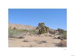 Photo of 56290 D Coyote Trail, Yucca Valley, CA 92284 (MLS # 3173752)