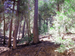 Photo of 0 Mojave River Road, Cedarpines Park, CA 92322 (MLS # 3173828)