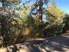 Photo of 464 Orange Avenue, Sugarloaf, CA 92386 (MLS # 3174043)