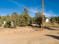 Photo of 0 Monte Vista Drive, Big Bear City, CA 92314 (MLS # 3174102)
