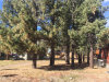 Photo of 40214 Guinan Lane, Big Bear Lake, CA 92315 (MLS # 3175332)