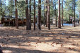 Photo of 296 Towhee Court, Big Bear Lake, CA 92315 (MLS # 3175345)