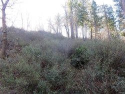 Photo of 0 Maple Drive, Cedar Glen, CA 92321 (MLS # 3175352)