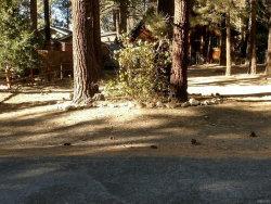 Photo of 929 Tinkerbell Avenue, Big Bear City, CA 92314 (MLS # 3175411)