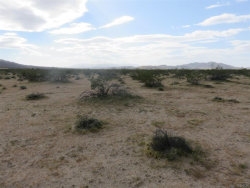 Photo of 0 Hollinger Road, Joshua Tree, CA 92252 (MLS # 3180088)