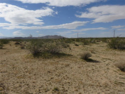 Photo of 0 Hollinger Road, Joshua Tree, CA 92252 (MLS # 3180095)