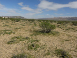 Photo of 0 California Ave, Joshua Tree, CA 92252 (MLS # 3180099)