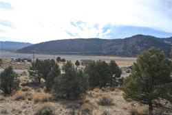 Photo of 0 Baldwin Lake Road, Big Bear City, CA 92314 (MLS # 3180190)