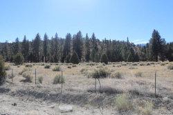 Photo of 1670 Shay Road, Big Bear City, CA 92314 (MLS # 3181320)