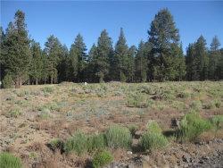 Photo of 2824 Erwin Ranch Road, Big Bear City, CA 92314 (MLS # 3182433)