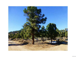 Photo of 47124 Benito Wilson Road, Big Bear City, CA 92314 (MLS # 3182619)