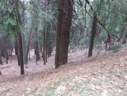 Photo of 0 Mozumdar Road, Cedarpines Park, CA 92325 (MLS # 3184938)