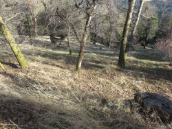 Photo of 0 Mojave River Road, Cedarpines Park, CA 92322 (MLS # 3185049)
