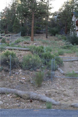 Photo of 1047 Van Dusen Canyon Road, Big Bear City, CA 92314 (MLS # 3186251)