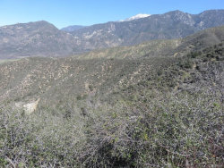 Photo of 37661 Oak Glen Road, Yucaipa, CA 92399 (MLS # 3186493)