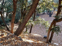 Photo of 0 Hillside Spur, Cedar Glen, CA 92322 (MLS # 3187845)