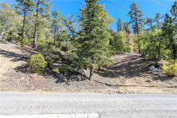 Photo of 0 Thrush Court, Big Bear Lake, CA 92315 (MLS # 3189029)