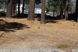 Photo of 42072 Snowmass Lane, Big Bear Lake, CA 92315 (MLS # 3189074)