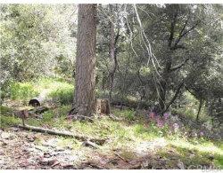 Photo of 24895 Felsen Drive, Crestline, CA 92325 (MLS # 31893167)