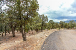 Photo of 0 Ponderosa Ranch Road, Big Bear City, CA 92314 (MLS # 31900087)