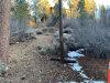 Photo of 412 Gold Mountain, Big Bear City, CA 92314 (MLS # 31900124)
