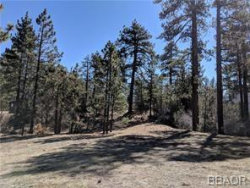 Photo of 557 Division Drive, Big Bear City, CA 92314 (MLS # 31901150)