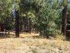 Photo of 0 Talmadge Spur, Big Bear Lake, CA 92315 (MLS # 31909064)