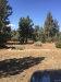 Photo of 44252 Manzanita Manzanita Lane, Sugarloaf, CA 92386 (MLS # 31912556)