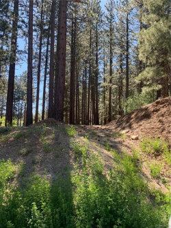 Photo of 42421 Evergreen Drive, Big Bear Lake, CA 92315 (MLS # 32002003)