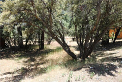 Photo of 0 Lodge Road, Fawnskin, CA 92333 (MLS # 32002036)